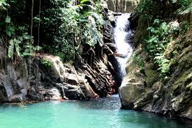 PariaFalls, Trinidad 2015 by Chris Fitzpatrick | https://commons.wikimedia.org/wiki/File:PariaFalls_Trinidad.JPG