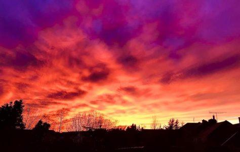 Mayo Sunset