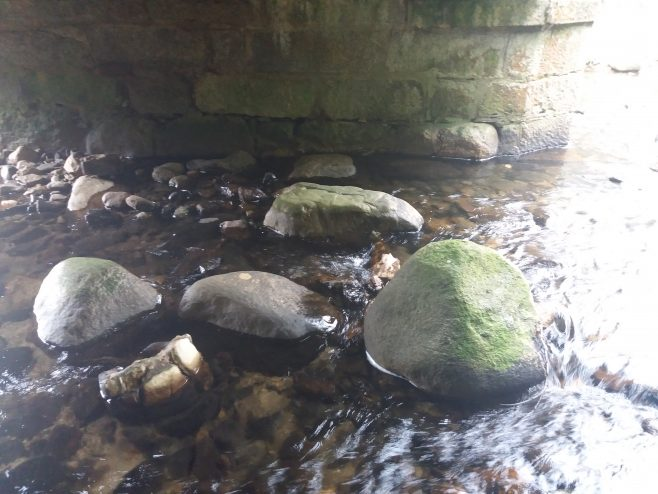 Stepping Stones under North Arch - looking South | Courtesy of Pat Reid