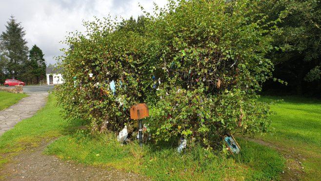 Rag Tree by Doon Holy Well   Sara Nylund