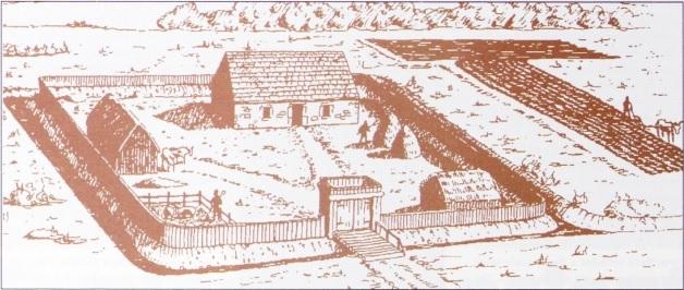 Moated site in Cutbush, Co. Kildare