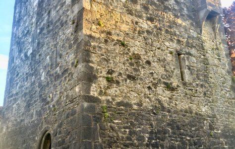 Maudlin Castle - Kilkenny's forgotten Leper Hospital