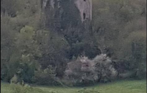 Kilnatoora Castle
