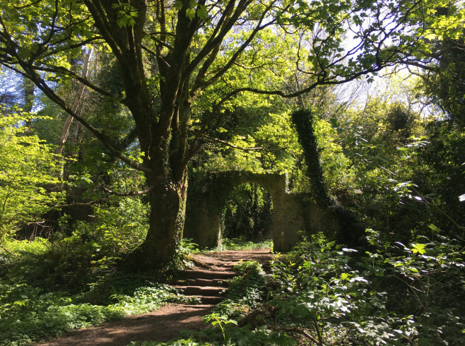 Archway to the Old Walled Garden in Massy's Wood, Rathfarnham, Dublin. | Grainne Corcoran