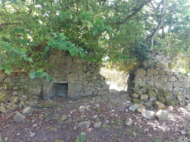 ruins of the church | Susan Clarke