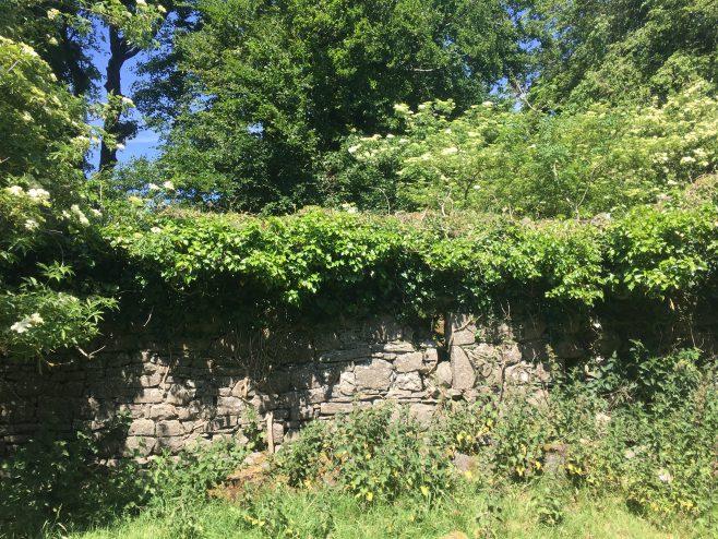 Walls of Portloman church | Susan Clarke
