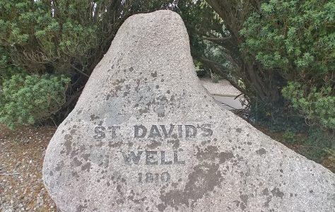 St David's Well, Ballinaslaney, Oylegate