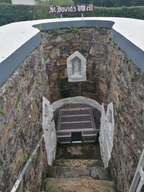 St David's Well, Ballinaslaney, Oylegate | Samantha Morris
