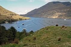 Irish Fjords