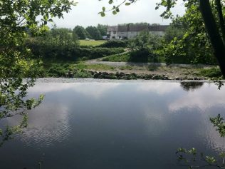 From the top of the weir, north bank | Tallaght Community Council