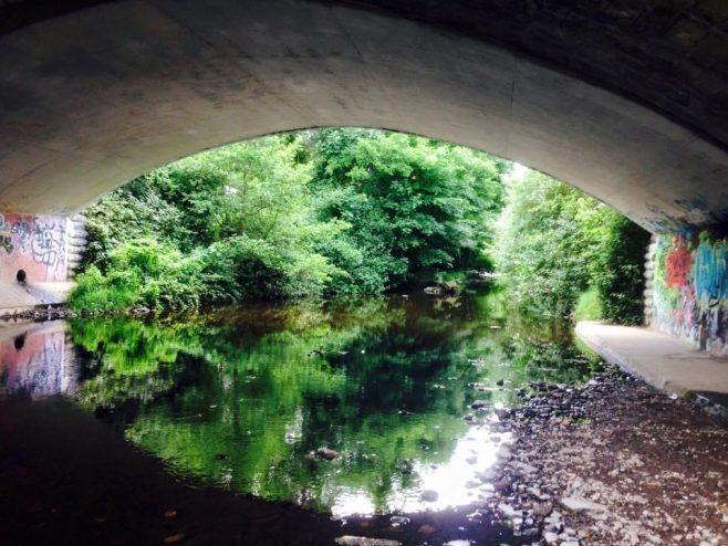 Under the bridge | The Echo