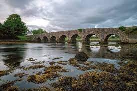 Mayo Bridges