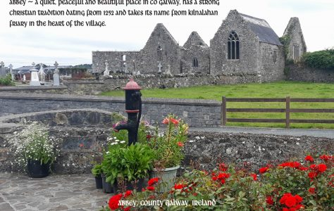 Abbey Heritage Group, Co. Galway