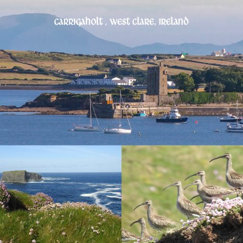 Kilkee & West Clare Heritage Group, Co. Clare   Irish Community Archive Network