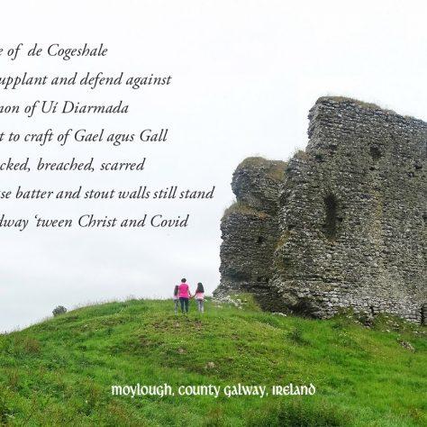 Moylough Heritage Society, Co. Galway   Irish Community Archive Network