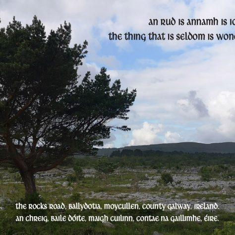 Moycullen Heritage Group, Co Galway/Cumann Staire Ruaidhrí Uí Fhlaitheartaigh Mháigh Cuilinn, Gaillimh   Irish Community Archive Network