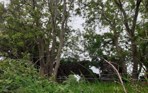 Ashbrook House Ruins