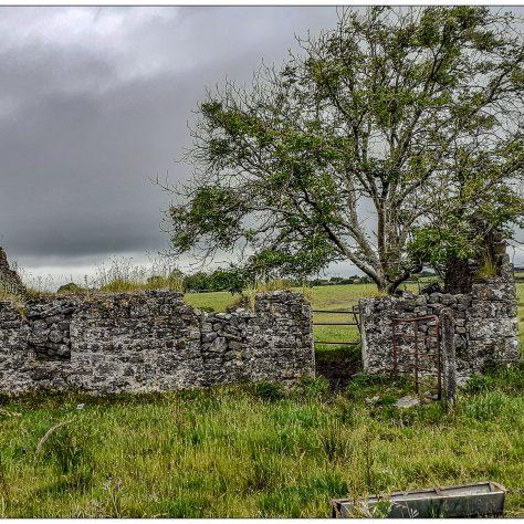 Derelict cottage   Noelene Beckett Crowe