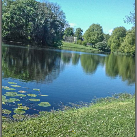 Turlough Park Lake   Noelene Beckett Crowe