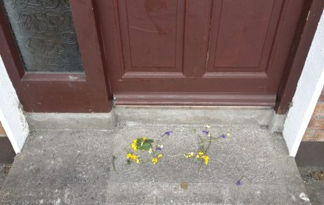 Flowers on doorstep