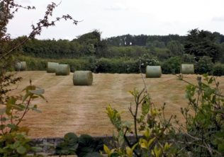 The field next to Lough Duff | © Jane Brideson
