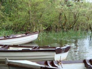 Close up of boats moored in reservoir | Roundwood Tidy Towns