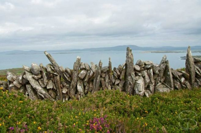 Dry stone wall Sherkin island Co. Cork   Sunny Wieler