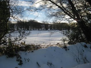 Snowy fields viewed through gap in hedge   Askanagap Community Development Association