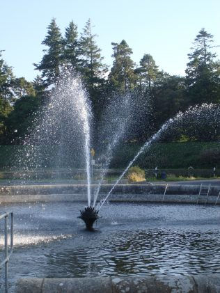 Fountain at Vartry Waterworks