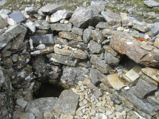 St. Patrick's Well | Aoife O'Toole
