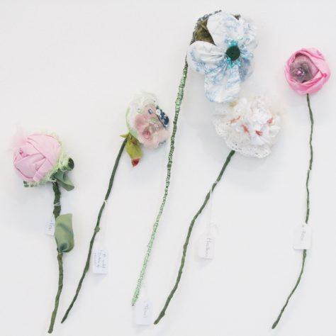 Close up of flowers by Rural Training Centre | Aoife O'Toole