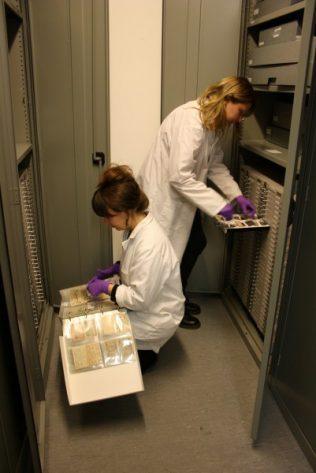 Heritage Week: Documentation Discoveries   National Museum of Ireland