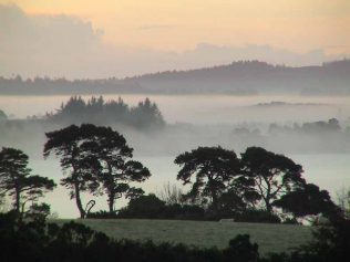 Misty view over Vartry. | Roundwood Tidy Towns