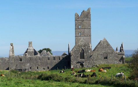 The Observant Reform & Moyne Friary, Co. Mayo: History and Architecture