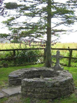 Rag Tree Tully, Kildare | www.treecouncil.ie
