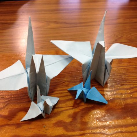 A couple of bird made by pupils in St. Josephs Secondary School, Castlebar, Co. Mayo. | Aoife O'Toole
