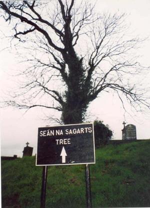 Sean Na Sagart's Tree | www.irishgraveyards.com