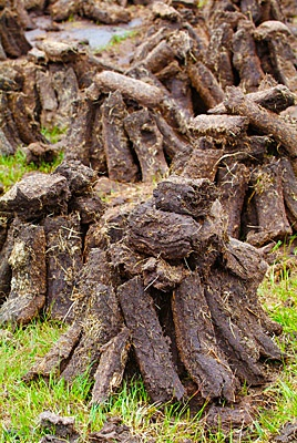 Reeks of Turf   www.connemaranews.org